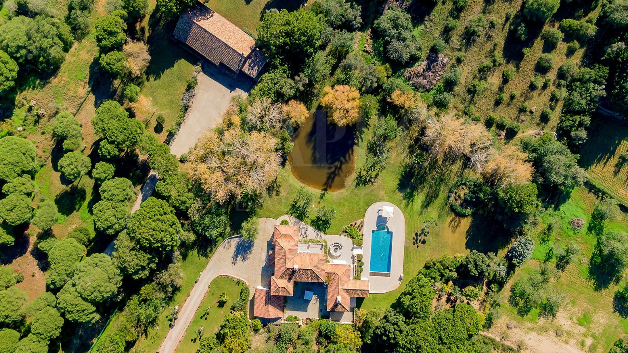 Family Villa with Guest Cottage in Almancil aerial view